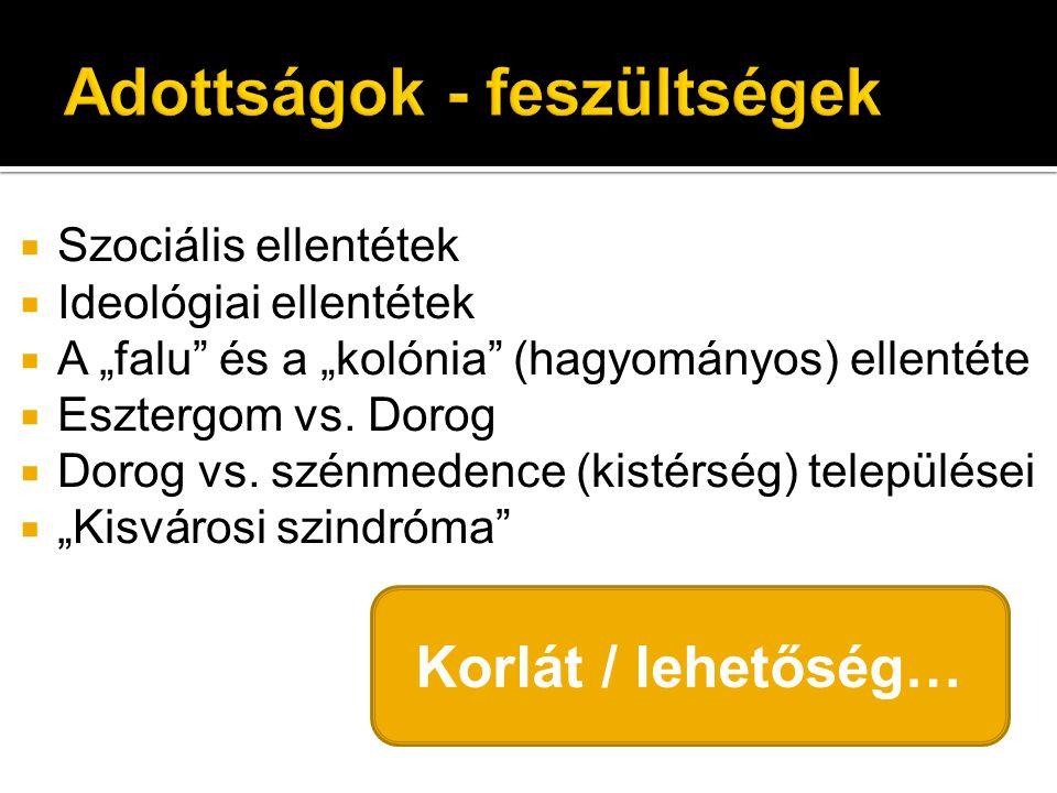 """ Szociális ellentétek  Ideológiai ellentétek  A """"falu és a """"kolónia (hagyományos) ellentéte  Esztergom vs."""