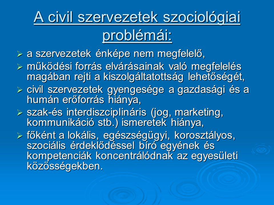 A civil szervezetek szociológiai problémái:  a szervezetek énképe nem megfelelő,  működési forrás elvárásainak való megfelelés magában rejti a kiszolgáltatottság lehetőségét,  civil szervezetek gyengesége a gazdasági és a humán erőforrás hiánya,  szak-és interdiszciplináris (jog, marketing, kommunikáció stb.) ismeretek hiánya,  főként a lokális, egészségügyi, korosztályos, szociális érdeklődéssel bíró egyének és kompetenciák koncentrálódnak az egyesületi közösségekben.