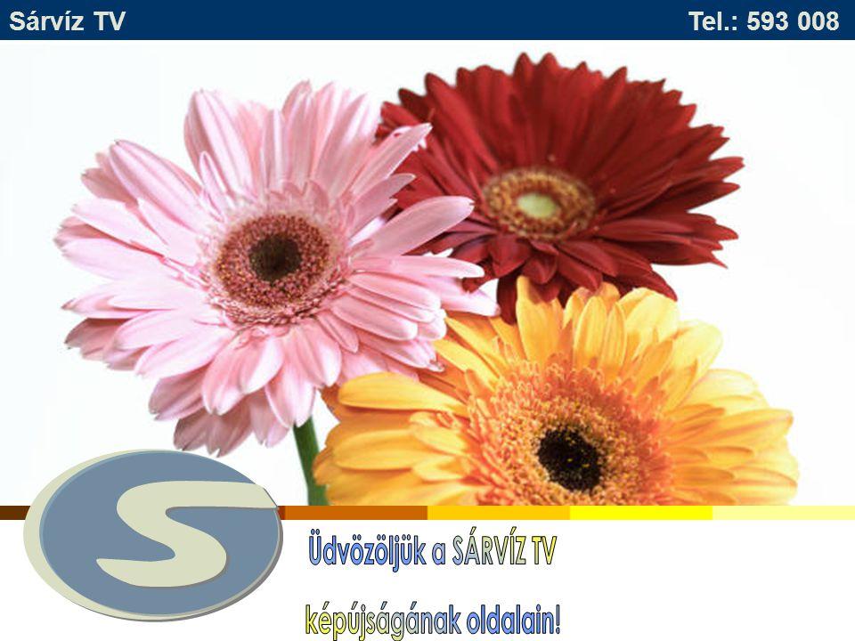 Tájékoztatjuk Önöket, hogy hirdetéseiket minden kedden, és szerdán 11 – 16 óráig a Sárvíz TV stúdiójában adhatják fel.