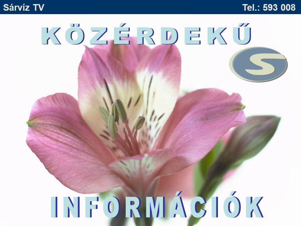 Sárvíz TV Tel.: 593 008 Ingyenes pályázati tanácsadás a Sárvíz Kistérségben .