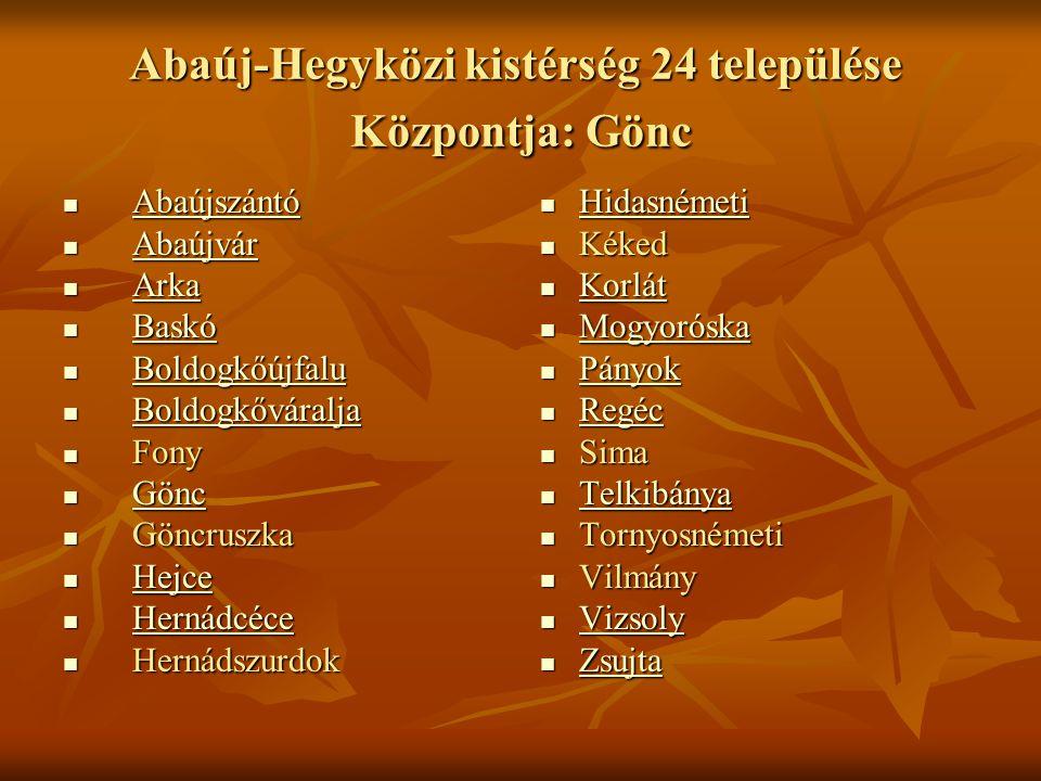 Abaúj-Hegyközi kistérség 24 települése Központja: Gönc  Abaújszántó Abaújszántó  Abaújvár Abaújvár  Arka Arka  Baskó Baskó  Boldogkőújfalu Boldog