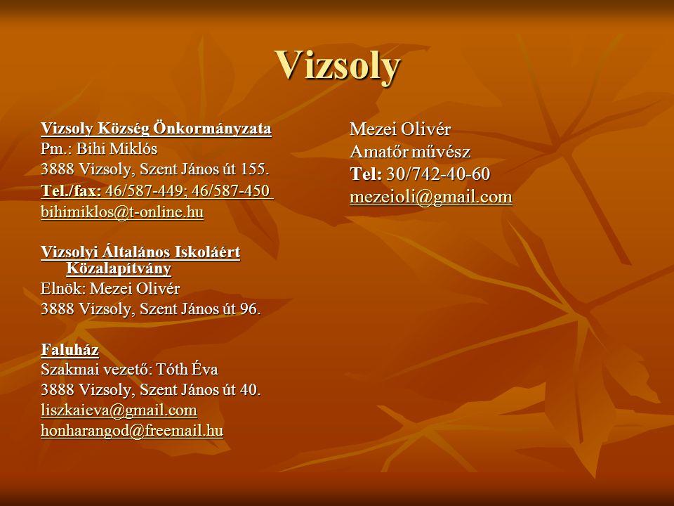 Vizsoly Vizsoly Község Önkormányzata Pm.: Bihi Miklós 3888 Vizsoly, Szent János út 155. Tel./fax: 46/587-449; 46/587-450 Tel./fax: 46/587-449; 46/587-