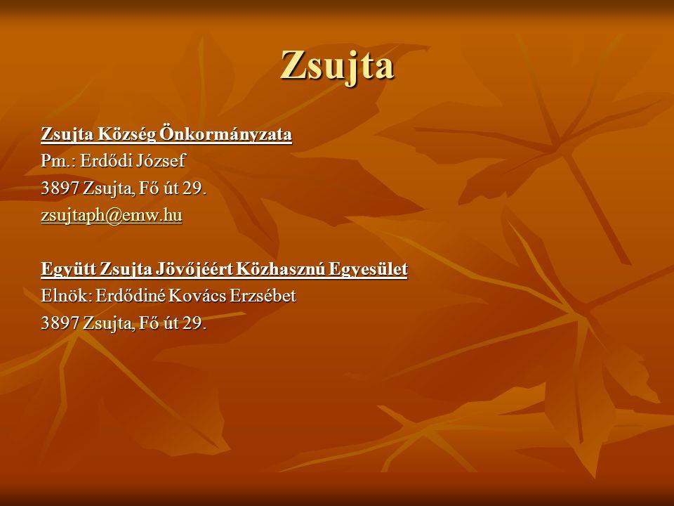 Zsujta Zsujta Község Önkormányzata Pm.: Erdődi József 3897 Zsujta, Fő út 29. zsujtaph@emw.hu Együtt Zsujta Jövőjéért Közhasznú Egyesület Elnök: Erdődi