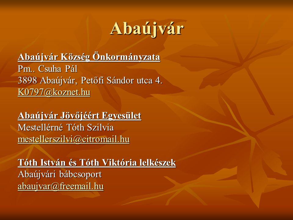 Vizsoly Vizsoly Község Önkormányzata Pm.: Bihi Miklós 3888 Vizsoly, Szent János út 155.