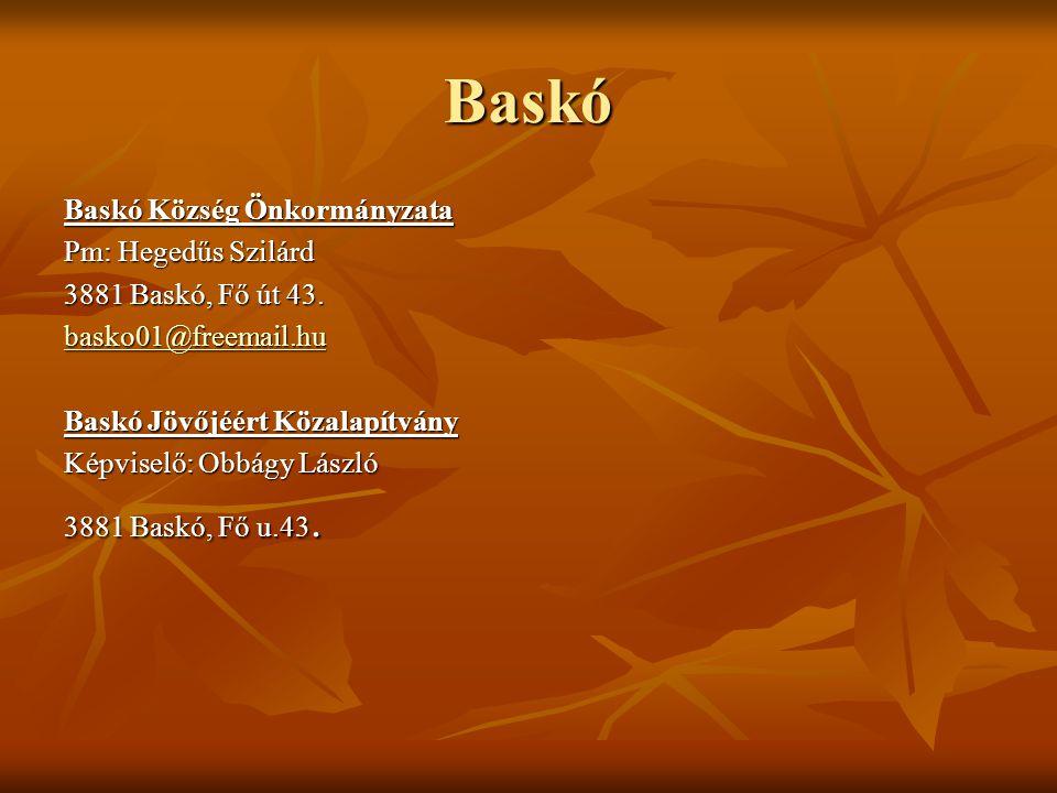 Baskó Baskó Község Önkormányzata Pm: Hegedűs Szilárd 3881 Baskó, Fő út 43. basko01@freemail.hu Baskó Jövőjéért Közalapítvány Képviselő: Obbágy László