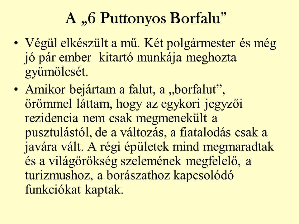 """A """"6 Puttonyos Borfalu •Végül elkészült a mű."""