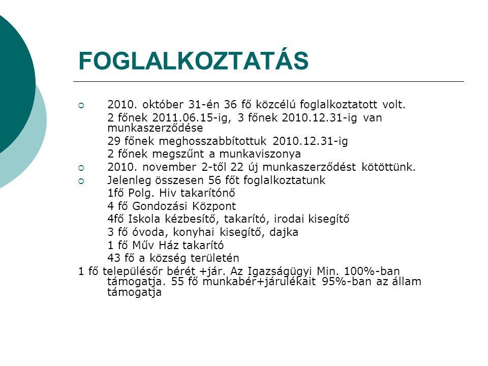 FOGLALKOZTATÁS  2010. október 31-én 36 fő közcélú foglalkoztatott volt.