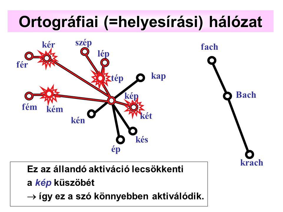 két Ortográfiai (=helyesírási) hálózat ép kén kap kép kém kér kés tép szép lép fém fér krach Bach fach Ez az állandó aktiváció lecsökkenti a kép küszöbét  így ez a szó könnyebben aktiválódik.