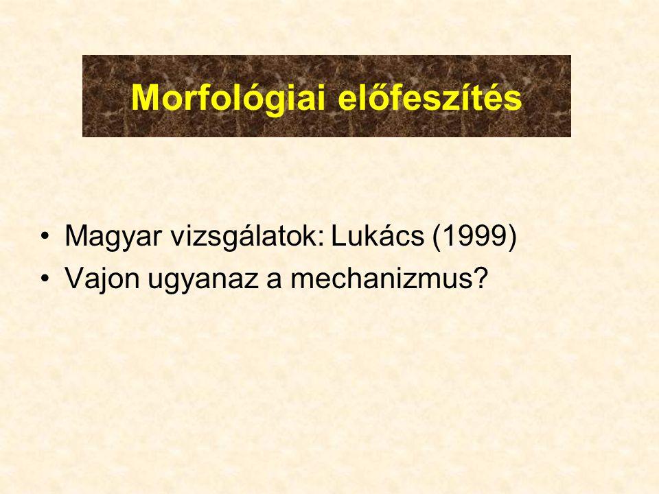 Morfológiai előfeszítés •Magyar vizsgálatok: Lukács (1999) •Vajon ugyanaz a mechanizmus
