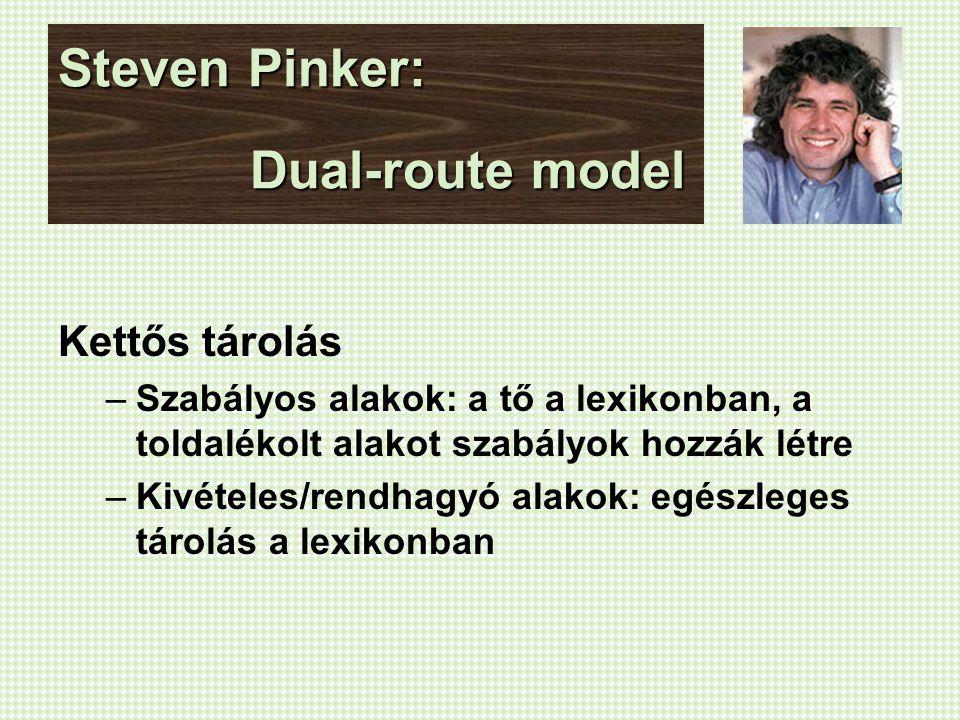 Steven Pinker: Dual-route model Kettős tárolás –Szabályos alakok: a tő a lexikonban, a toldalékolt alakot szabályok hozzák létre –Kivételes/rendhagyó alakok: egészleges tárolás a lexikonban
