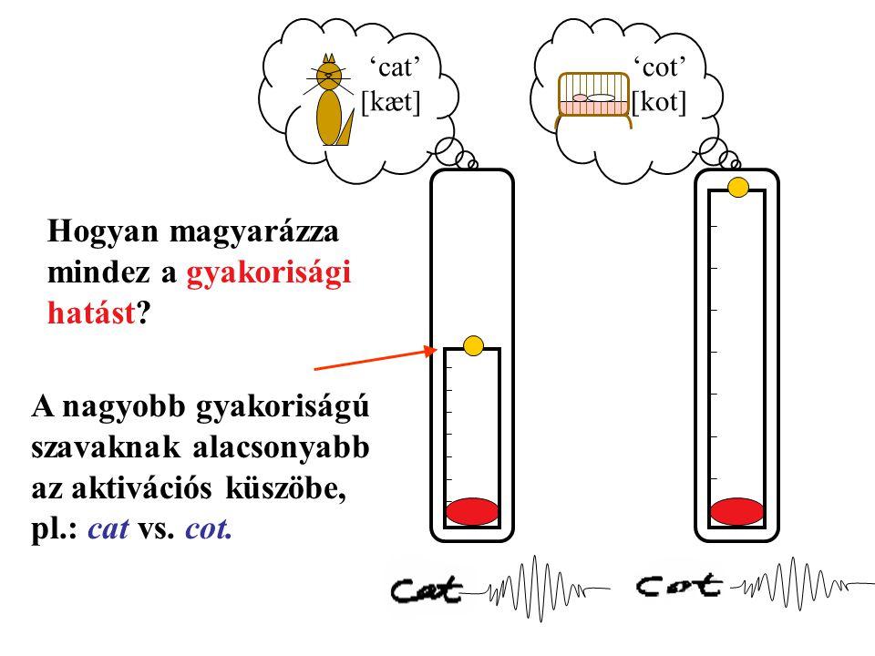A nagyobb gyakoriságú szavaknak alacsonyabb az aktivációs küszöbe, pl.: cat vs.