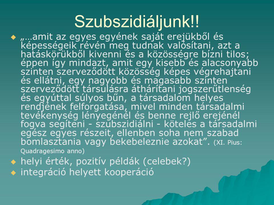 Szubszidiáljunk!.