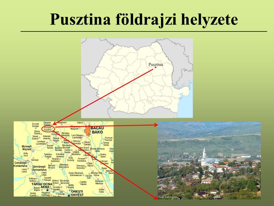 Pusztina földrajzi helyzete