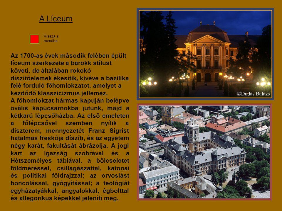 Az 1700-as évek második felében épült líceum szerkezete a barokk stílust követi, de általában rokokó díszítőelemek ékesítik, kivéve a bazilika felé fo