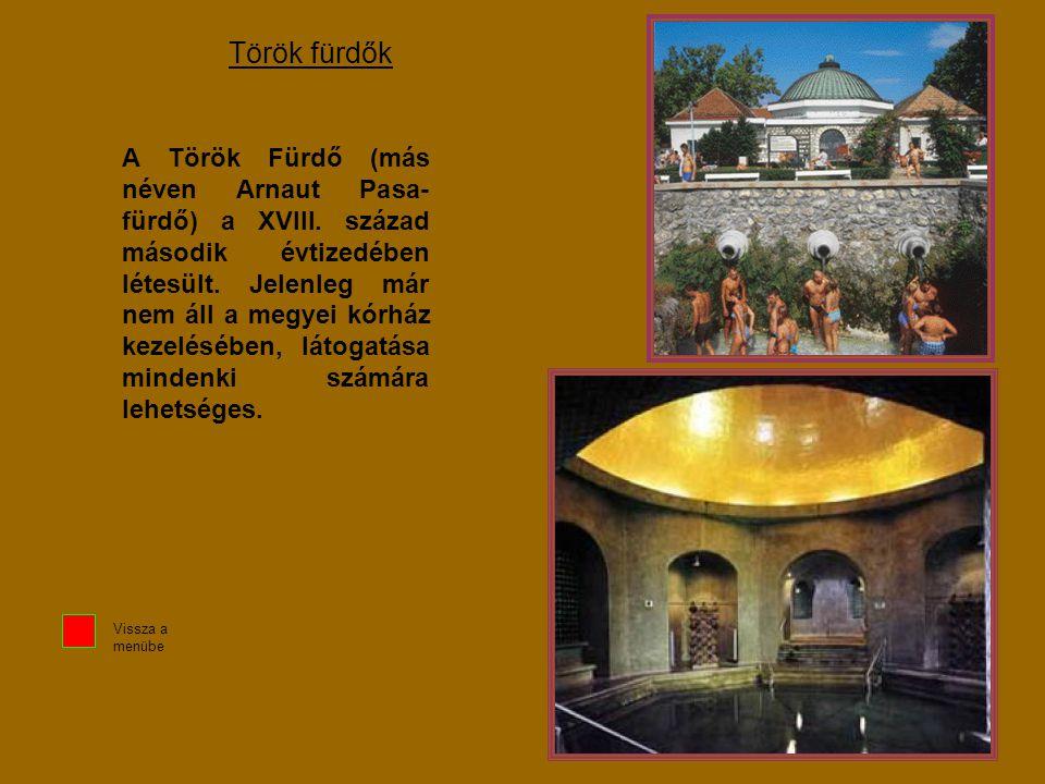 Török fürdők A Török Fürdő (más néven Arnaut Pasa- fürdő) a XVIII. század második évtizedében létesült. Jelenleg már nem áll a megyei kórház kezeléséb