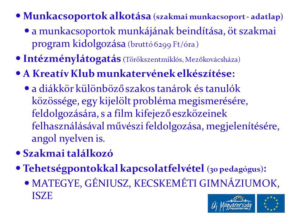  Munkacsoportok alkotása (szakmai munkacsoport - adatlap)  a munkacsoportok munkájának beindítása, öt szakmai program kidolgozása (bruttó 6299 Ft/ór