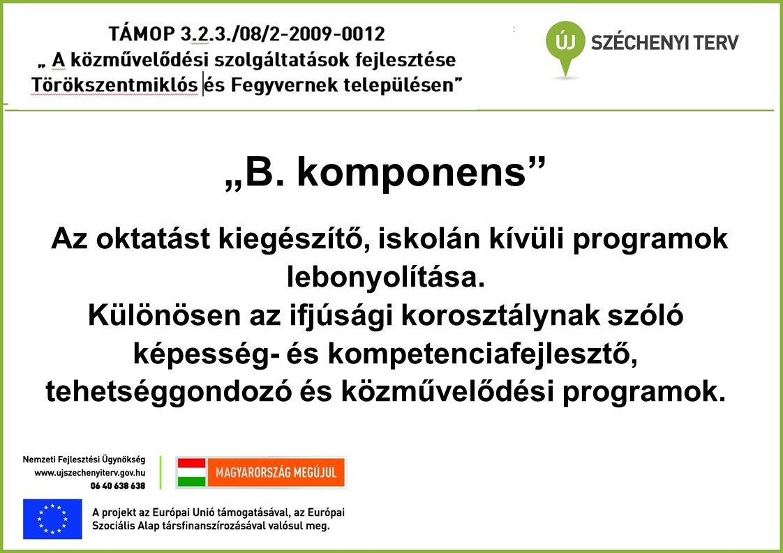 """""""B. komponens"""" Az oktatást kiegészítő, iskolán kívüli programok lebonyolítása. Különösen az ifjúsági korosztálynak szóló képesség- és kompetenciafejle"""