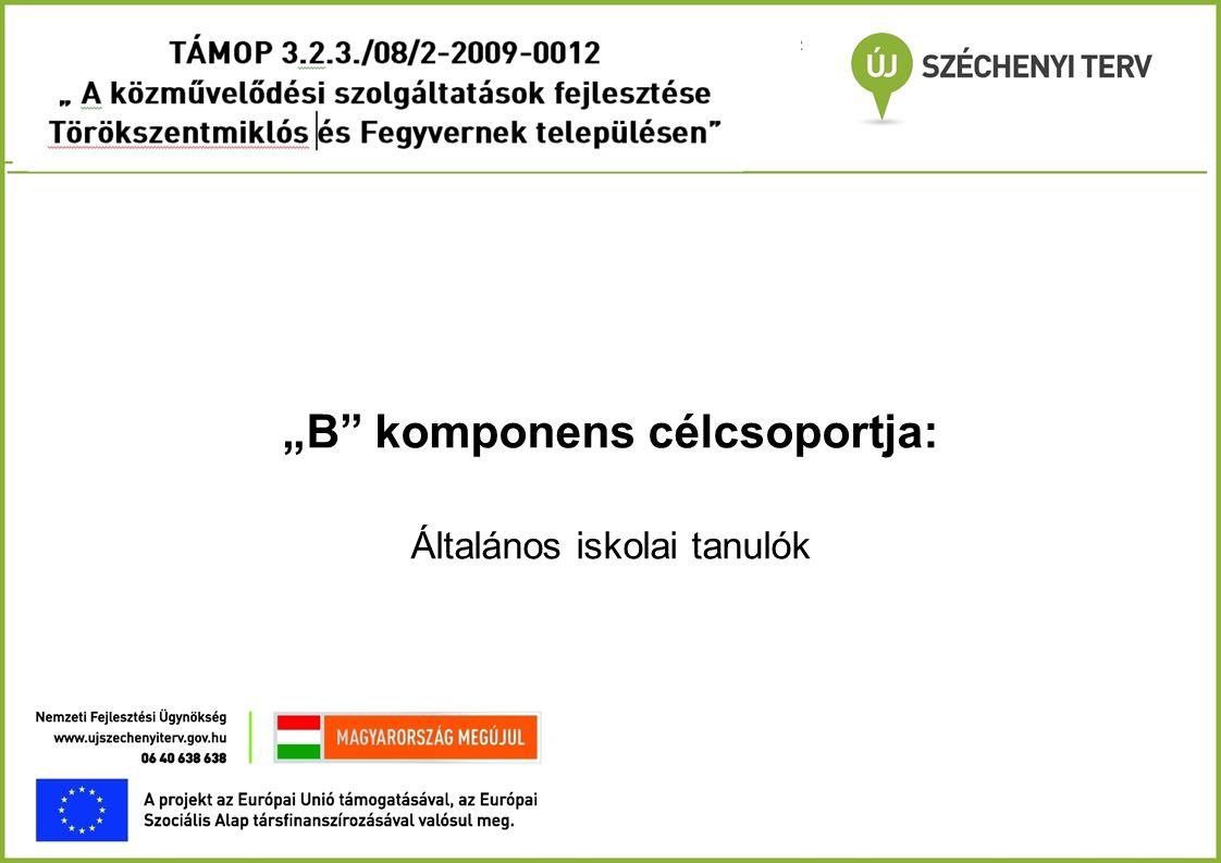 """""""B"""" komponens célcsoportja: Általános iskolai tanulók"""