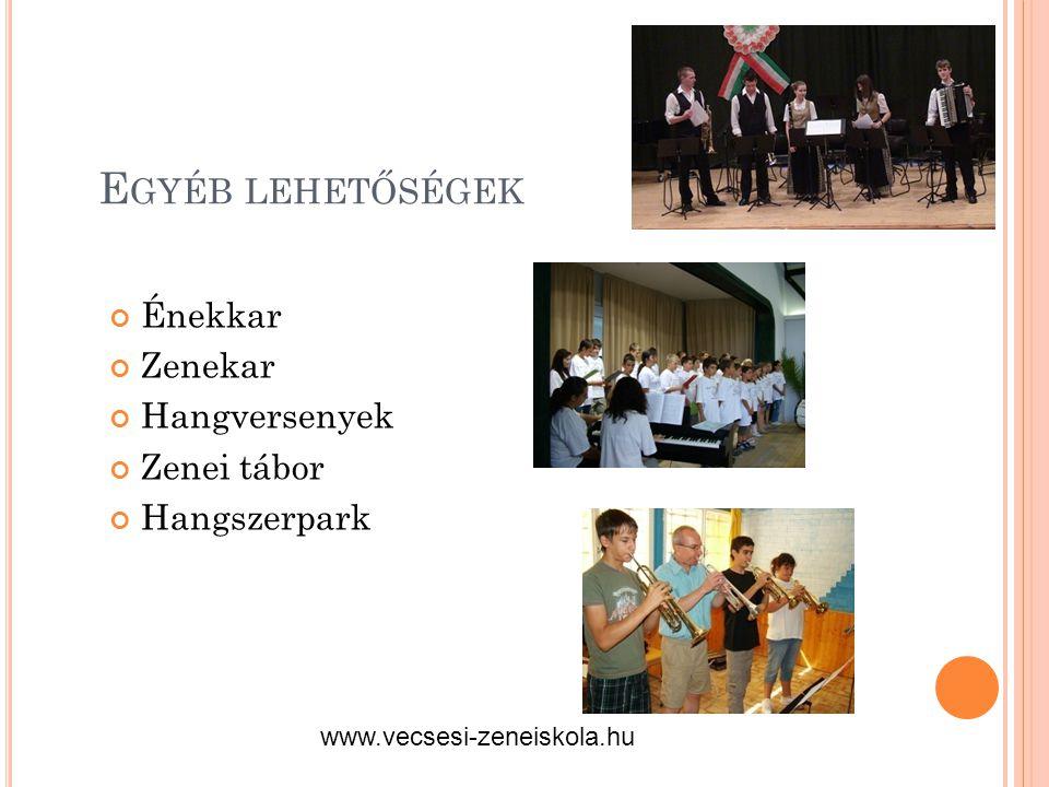 E GYÉB LEHETŐSÉGEK Énekkar Zenekar Hangversenyek Zenei tábor Hangszerpark www.vecsesi-zeneiskola.hu