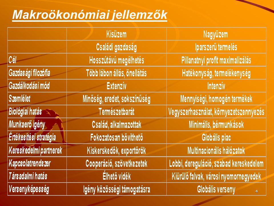 4 Makroökonómiai jellemzők