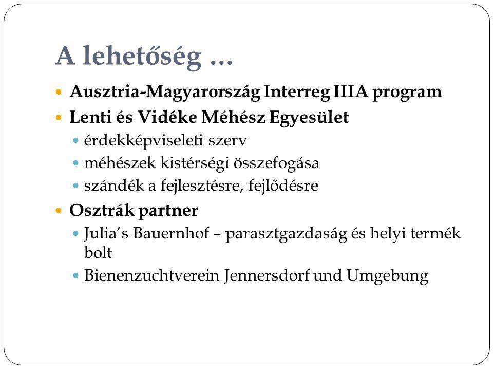 A lehetőség …  Ausztria-Magyarország Interreg IIIA program  Lenti és Vidéke Méhész Egyesület  érdekképviseleti szerv  méhészek kistérségi összefogása  szándék a fejlesztésre, fejlődésre  Osztrák partner  Julia's Bauernhof – parasztgazdaság és helyi termék bolt  Bienenzuchtverein Jennersdorf und Umgebung