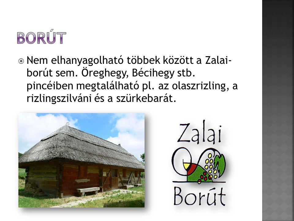  Nem elhanyagolható többek között a Zalai- borút sem.