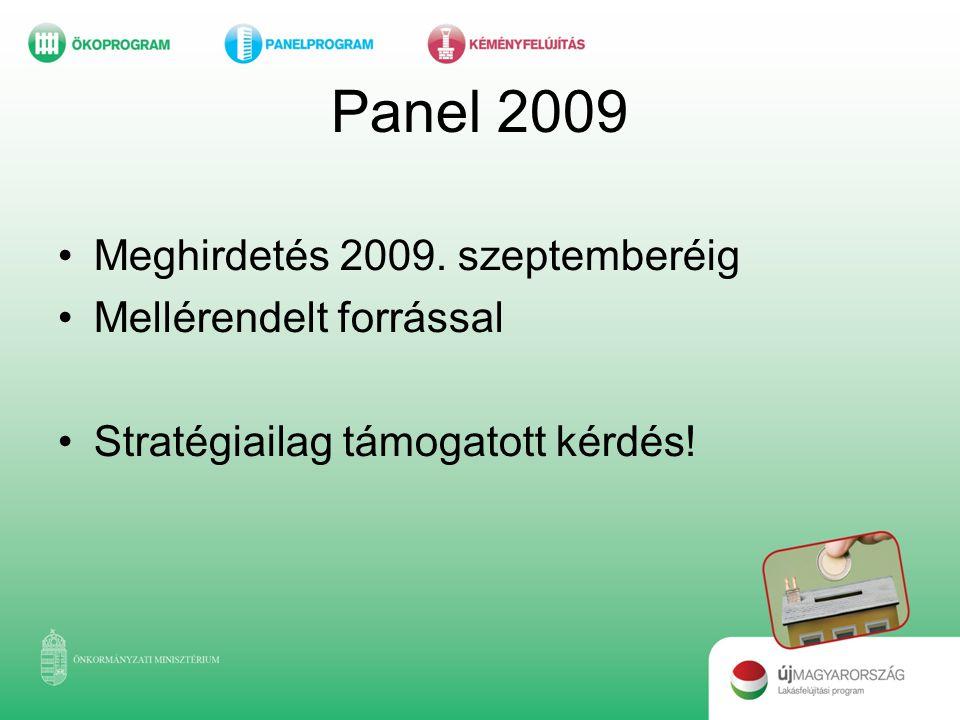 Panel 2009 •Meghirdetés 2009. szeptemberéig •Mellérendelt forrással •Stratégiailag támogatott kérdés!