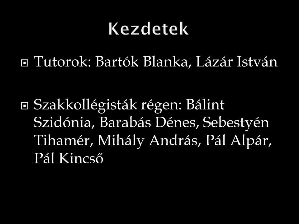 Bálint Szidónia: Földrajz szak, III.év  Barabás Dénes: Földrajz szak, III.