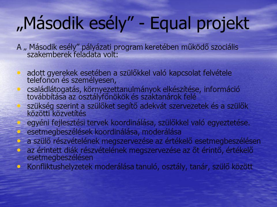 """""""Második esély"""" - Equal projekt A """" Második esély"""" pályázati program keretében működő szociális szakemberek feladata volt: • • adott gyerekek esetében"""