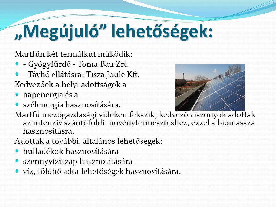 """""""Megújuló lehetőségek: Martfűn két termálkút működik:  - Gyógyfürdő - Toma Bau Zrt."""
