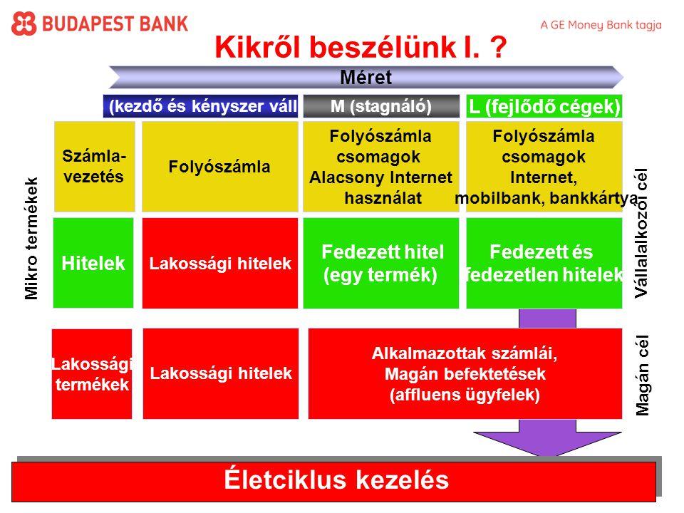3 Készítette: Erdei Zsuzsa/Budapest Bank NyRt.Kikről beszélünk I.