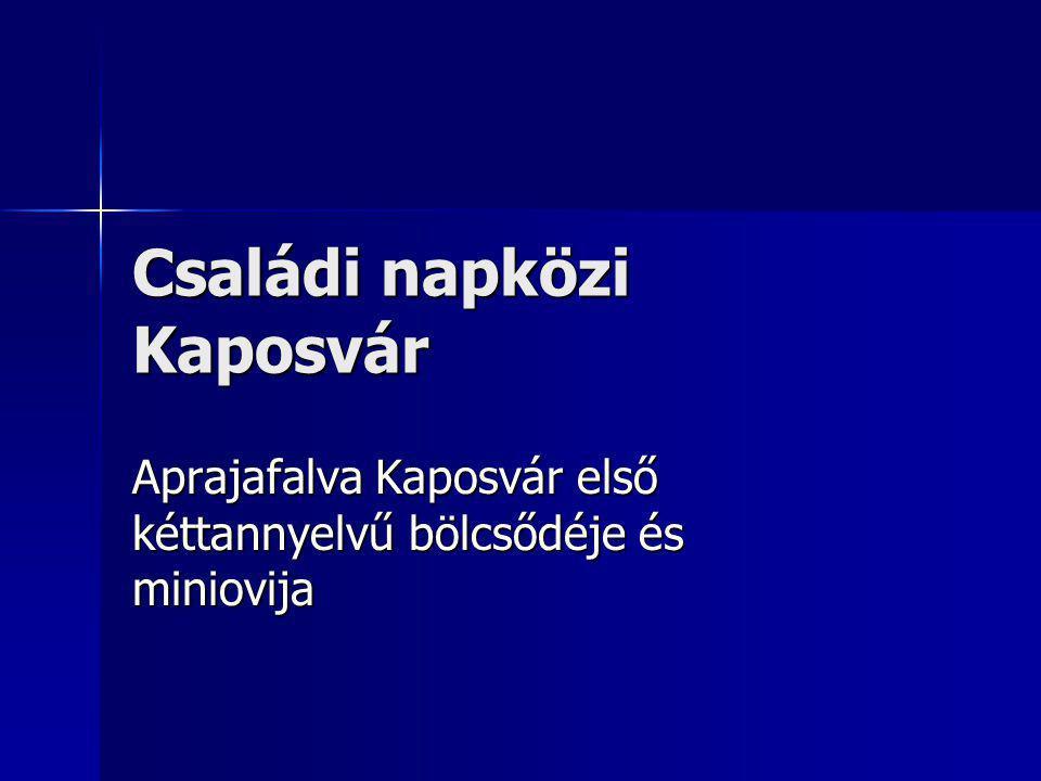 Családi napközi Kaposvár Aprajafalva Kaposvár első kéttannyelvű bölcsődéje és miniovija