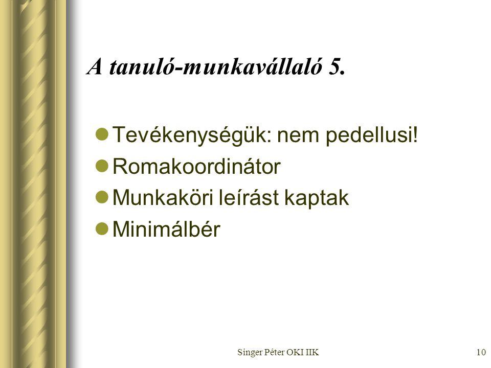 Singer Péter OKI IIK10 A tanuló-munkavállaló 5.  Tevékenységük: nem pedellusi.
