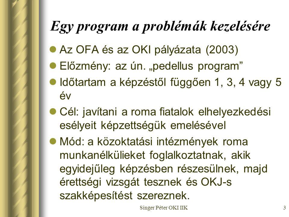 Singer Péter OKI IIK3 Egy program a problémák kezelésére  Az OFA és az OKI pályázata (2003)  Előzmény: az ún.