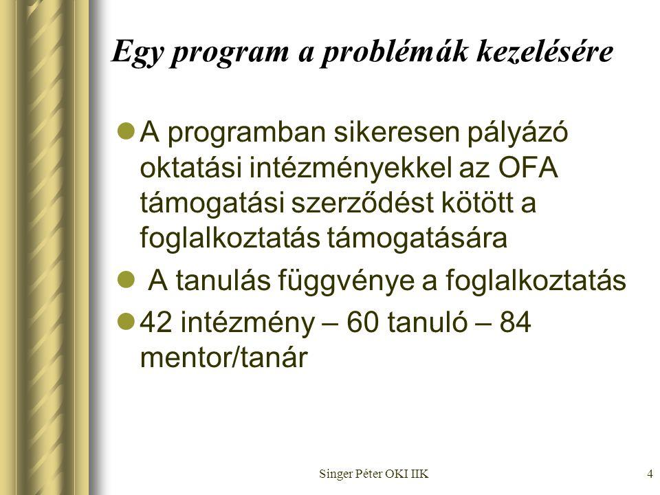 Singer Péter OKI IIK4 Egy program a problémák kezelésére  A programban sikeresen pályázó oktatási intézményekkel az OFA támogatási szerződést kötött a foglalkoztatás támogatására  A tanulás függvénye a foglalkoztatás  42 intézmény – 60 tanuló – 84 mentor/tanár