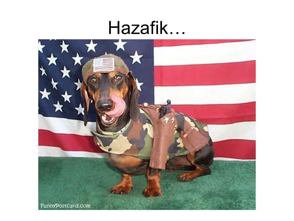 Hazafik…