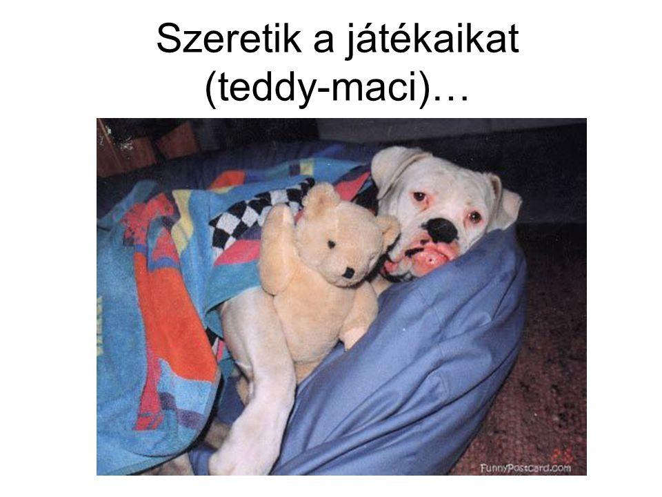Szeretik a játékaikat (teddy-maci)…