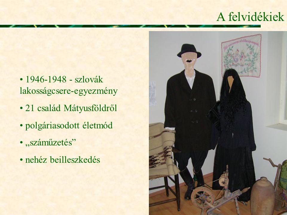 """A felvidékiek • 1946-1948 - szlovák lakosságcsere-egyezmény • 21 család Mátyusföldről • polgáriasodott életmód • """"száműzetés"""" • nehéz beilleszkedés"""