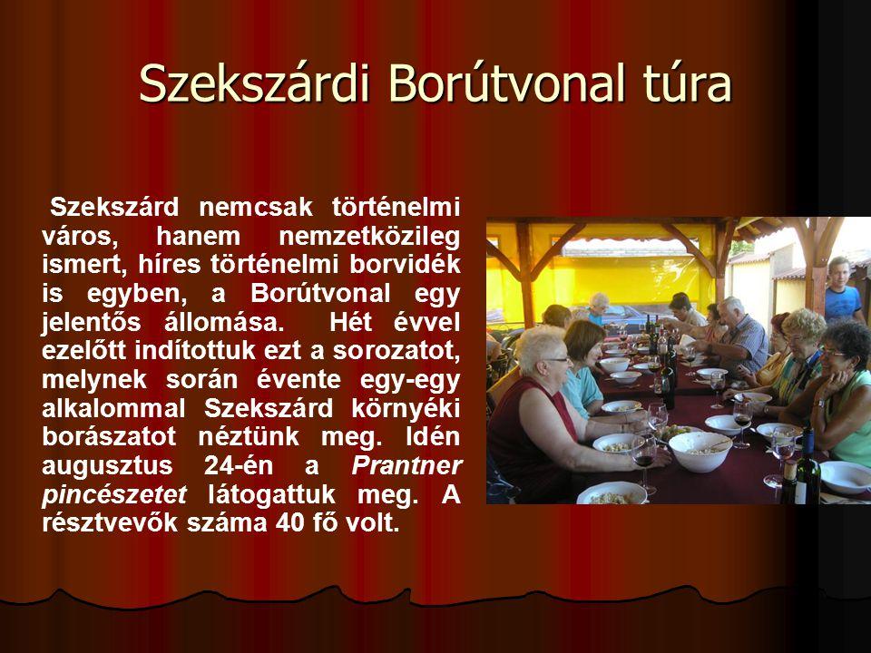 Szekszárdi Borútvonal túra Szekszárd nemcsak történelmi város, hanem nemzetközileg ismert, híres történelmi borvidék is egyben, a Borútvonal egy jelen