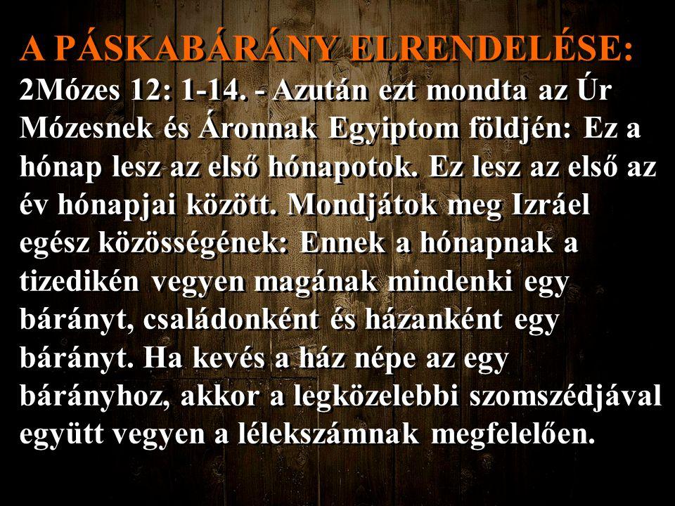 A PÁSKABÁRÁNY ELRENDELÉSE: 2Mózes 12: 1-14. - Azután ezt mondta az Úr Mózesnek és Áronnak Egyiptom földjén: Ez a hónap lesz az első hónapotok. Ez lesz
