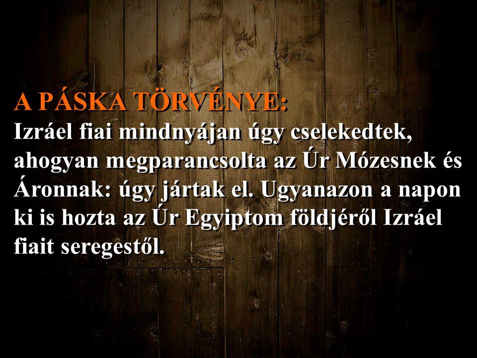 A PÁSKA TÖRVÉNYE: Izráel fiai mindnyájan úgy cselekedtek, ahogyan megparancsolta az Úr Mózesnek és Áronnak: úgy jártak el. Ugyanazon a napon ki is hoz