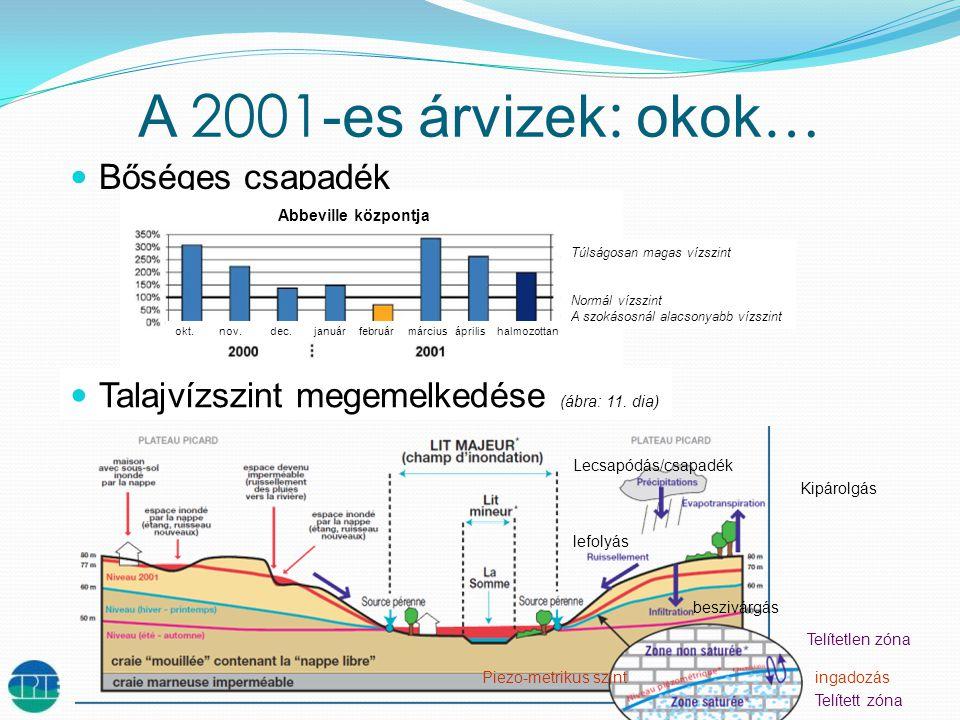 A 2001 -es árvizek : okok …  Bőséges csapadék  Talajvízszint megemelkedése (ábra: 11.