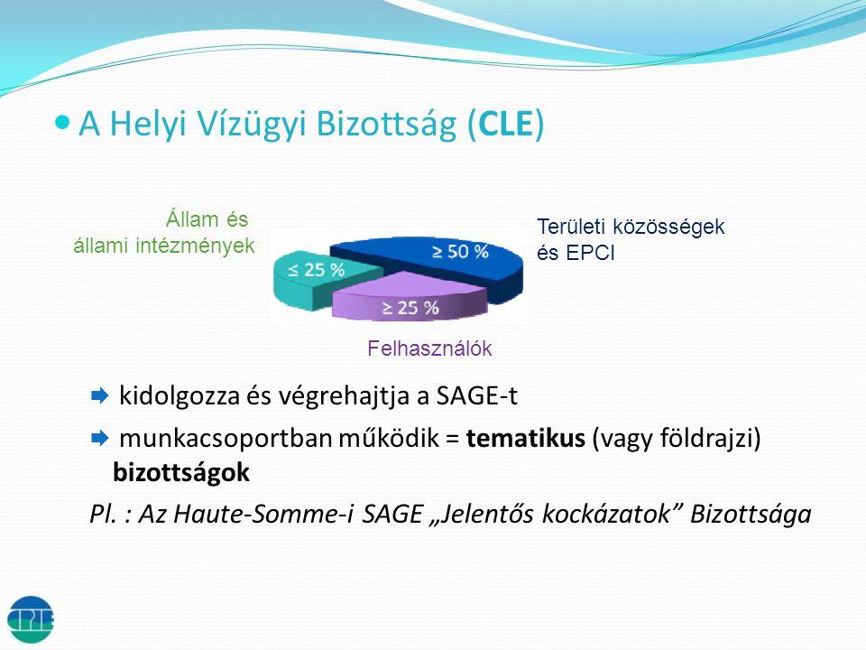  A Helyi Vízügyi Bizottság (CLE)  kidolgozza és végrehajtja a SAGE-t  munkacsoportban működik = tematikus (vagy földrajzi) bizottságok Pl.