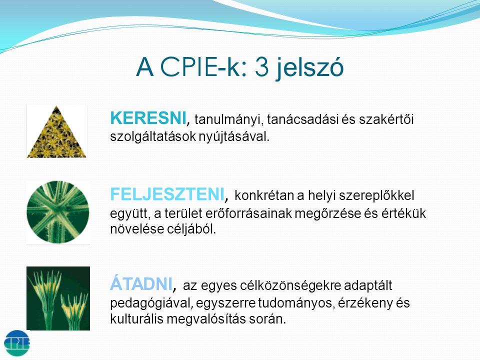 A CPIE -k : 3 jelszó KERESNI, tanulmányi, tanácsadási és szakértői szolgáltatások nyújtásával.