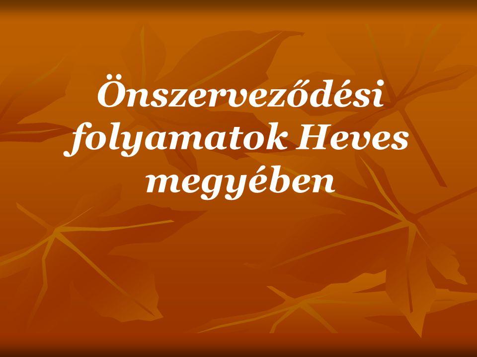 Résztvevők  A fórumra képviseletet állíthat minden Egerben bejegyzett civil szerveződés - jogi személy (egyesület, alapítvány, szövetség), valamint bírósági bejegyzéssel nem rendelkező, de rendszeres működést igazoló civil közösség (baráti kör, hobby csoport, együttes, stb), amely kormányzati szervekhez, politikai pártokhoz és gazdasági érdekcsoportokhoz nem tartozik, nem nyereségérdekelt, közérdekű tevékenységet folytat.