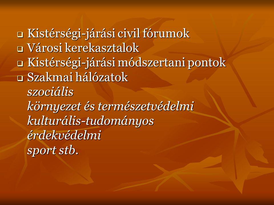  Kistérségi-járási civil fórumok  Városi kerekasztalok  Kistérségi-járási módszertani pontok  Szakmai hálózatok szociális környezet és természetvédelmi kulturális-tudományosérdekvédelmi sport stb.