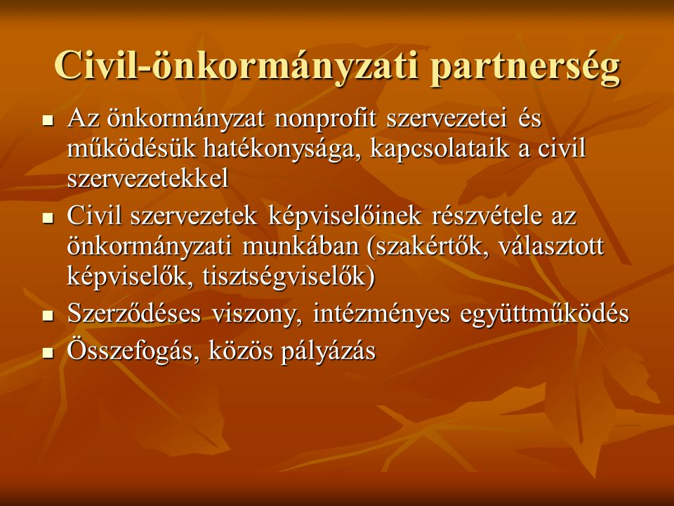 Civil-önkormányzati partnerség  Az önkormányzat nonprofit szervezetei és működésük hatékonysága, kapcsolataik a civil szervezetekkel  Civil szervezetek képviselőinek részvétele az önkormányzati munkában (szakértők, választott képviselők, tisztségviselők)  Szerződéses viszony, intézményes együttműködés  Összefogás, közös pályázás