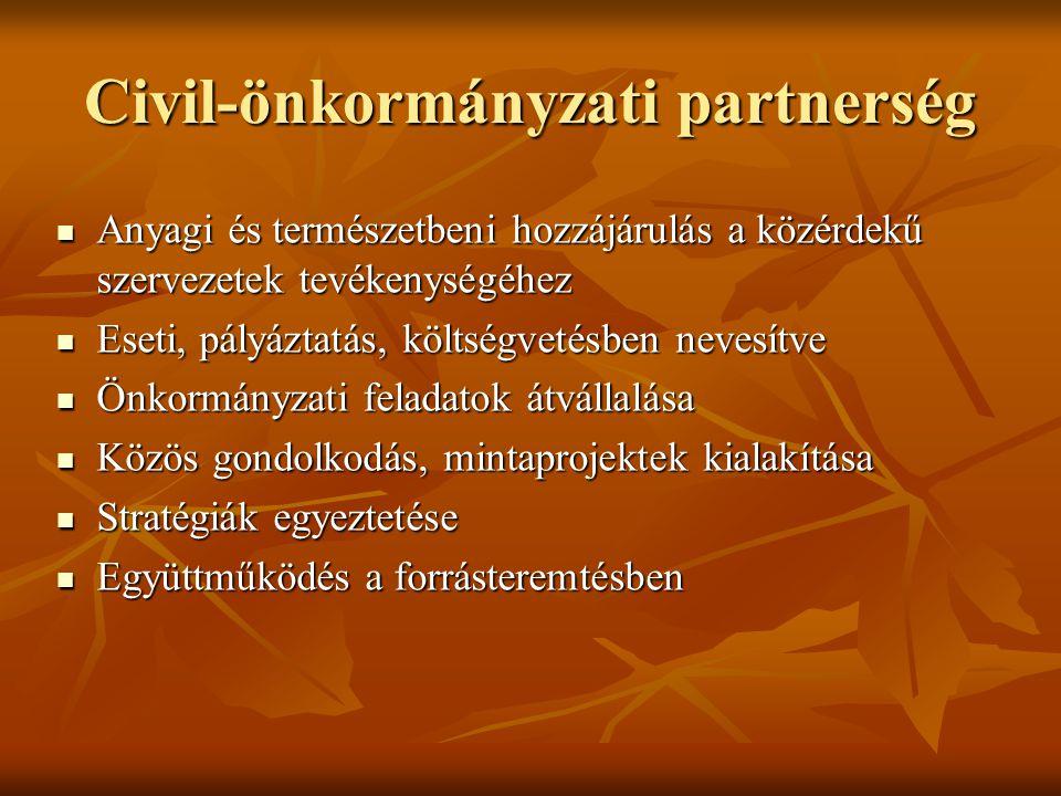 Civil-önkormányzati partnerség  Anyagi és természetbeni hozzájárulás a közérdekű szervezetek tevékenységéhez  Eseti, pályáztatás, költségvetésben nevesítve  Önkormányzati feladatok átvállalása  Közös gondolkodás, mintaprojektek kialakítása  Stratégiák egyeztetése  Együttműködés a forrásteremtésben