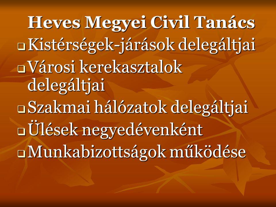 Heves Megyei Civil Tanács elnöksége  13 tag  Kistérségek és szakmai összefogások delegálják  Hét kistérség-járás  Mintegy öt szakterület  Ülések kéthavonta  Rotációs rendszer