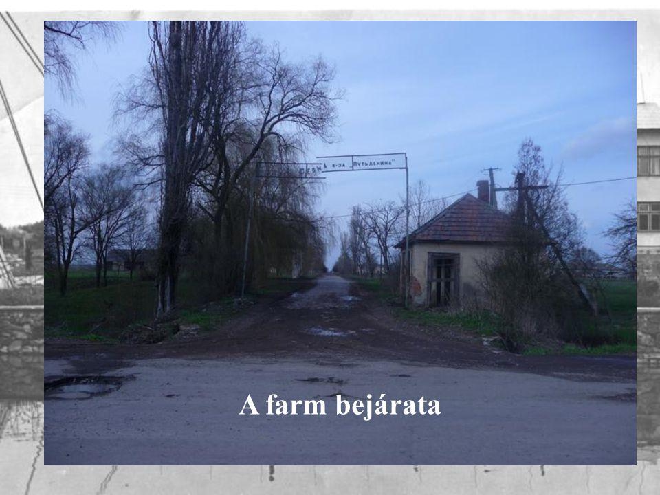 A farm bejárata